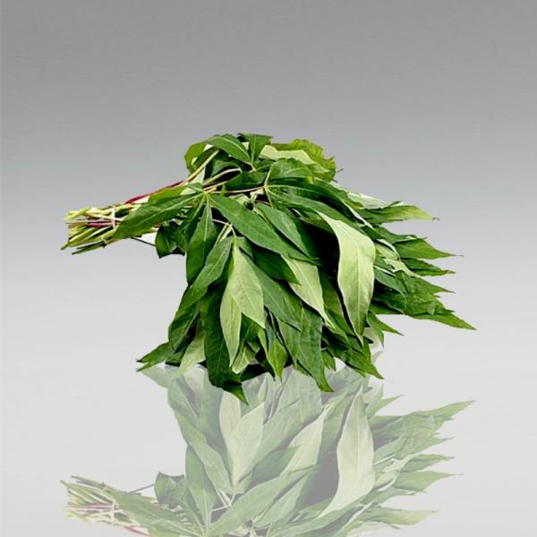 Cassaveblätter, 200g